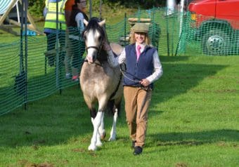 Mirfield Show 2015