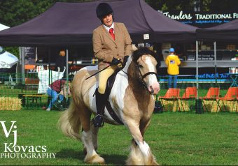 Horse and Pony Show 2018