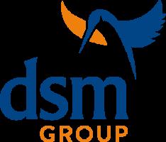 DSM Group