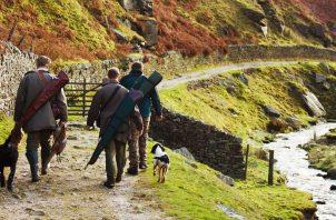 Kirkbourne Gun Dogs – Sponsored by Burg Wachter